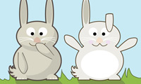 Funny looking rabbits.